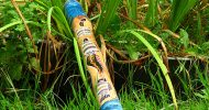 Bild Didgeridoo Workshop in Sachsen