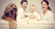 Bild Family Fotoshooting in Berlin