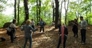 Bild Geocaching in Chemnitz