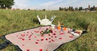 Bild Kutschfahrt mit Picknick in Dresden