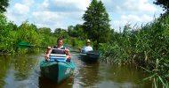 Bild Paddeln im Spreewald - 2er Kanu für einen Tag