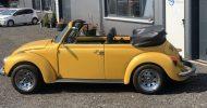 Bild VW Käfer Cabrio fahren bei Dresden