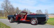 Bild Ford Mustang Cabrio fahren bei Dresden