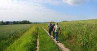 Bild Abenteuer Wanderung in der Sächsischen Schweiz für Familien