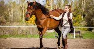 Bild Freundinnen-Tag am Pferd in Berlin